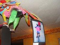 Exposicion Fotografica Lado Humano Bicicleta